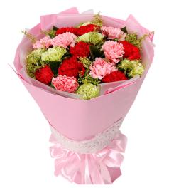 爱的感恩-19枝彩色康乃馨