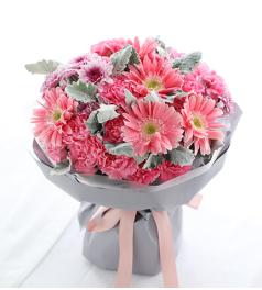 嫣然-粉色康乃馨19枝,粉色扶郎花5枝,紫色小雏菊3枝,银叶菊10枝