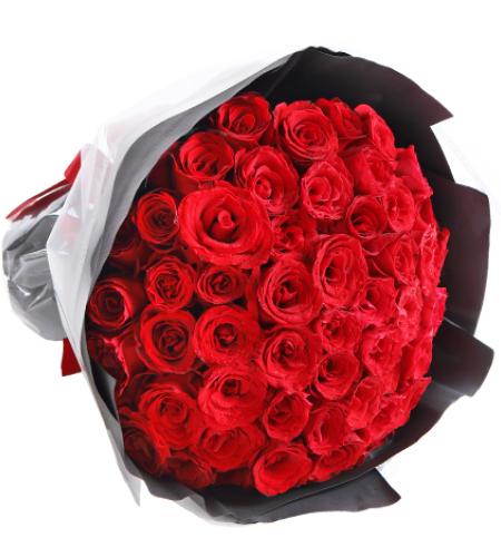深情眷恋-66枝红玫瑰