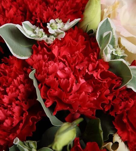 妈妈的爱-红色康乃馨16枝,香槟色桔梗