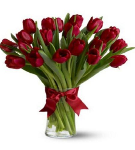 愿意为你-20枝红色郁金香瓶插花