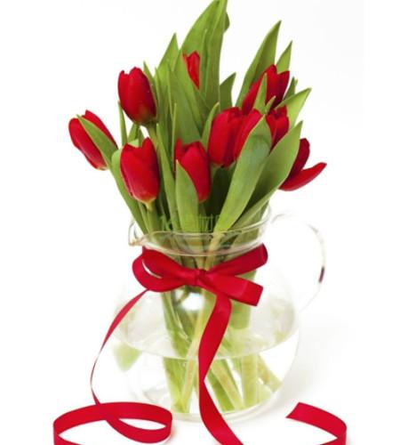 爱情之花-10枝红色郁金香