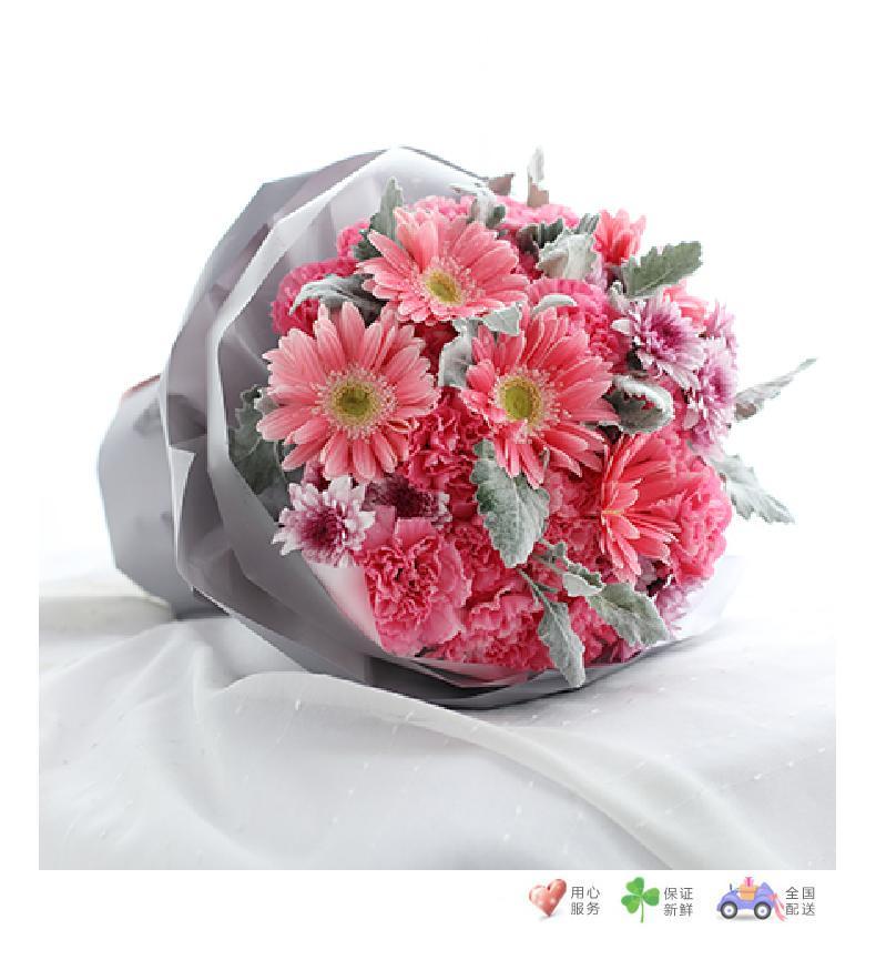 嫣然-粉色康乃馨19枝,粉色扶郎花5枝,紫色小雏菊3枝,银叶菊10枝-鲜花速递