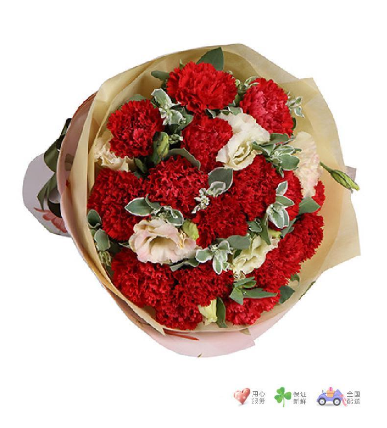 妈妈的爱-红色康乃馨16枝,香槟色桔梗-鲜花速递