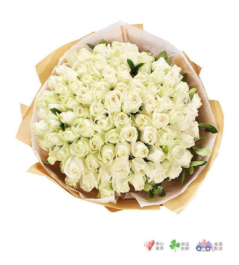 初心永不变-白玫瑰99枝,栀子叶适量-鲜花速递