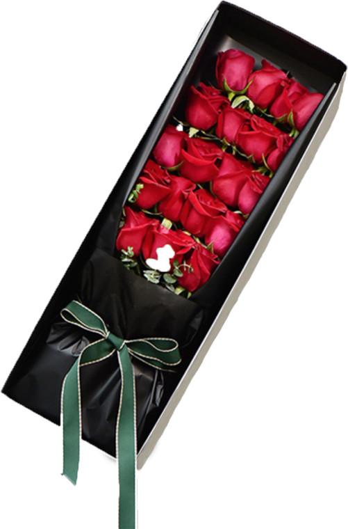 19枝红玫瑰礼盒1-1