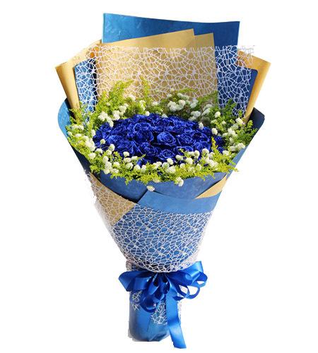清醇的爱-33枝蓝色妖姬