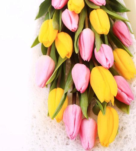 爱你多一点-19朵混色郁金香(黄+粉)