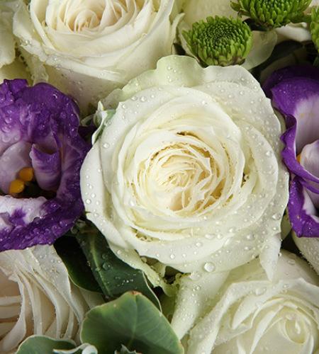 纯纯的爱-白玫瑰11枝,紫色桔梗3枝,绿小菊2枝,叶上花5枝