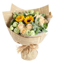 晴朗-香槟玫瑰11枝,向日葵2枝,绿色桔梗5枝,绿色小菊3枝,叶上花3枝