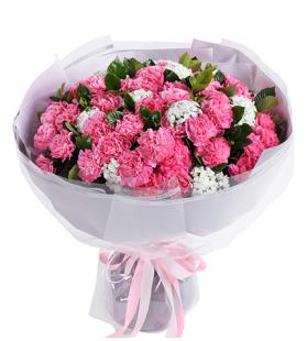 暖暖情意-粉色康乃馨66枝