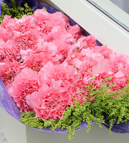 守候-19朵粉色康乃馨,黄莺点缀