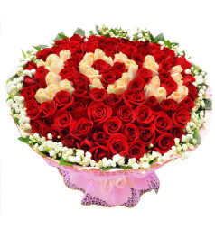 情定今生-99朵玫瑰(红玫瑰+香槟玫瑰字),满天星绿叶围绕