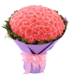 伟大的母亲-99朵粉色康乃馨,搭满天星/黄莺