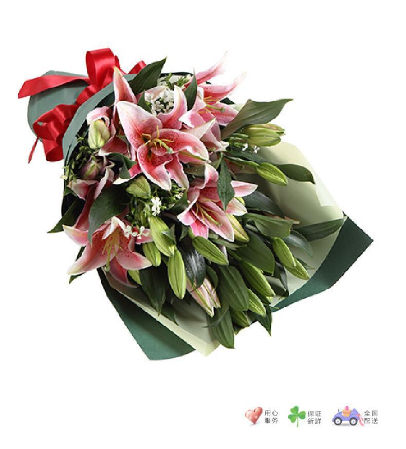 清香-粉色香水百合6枝,白色相思梅3枝-鲜花速递
