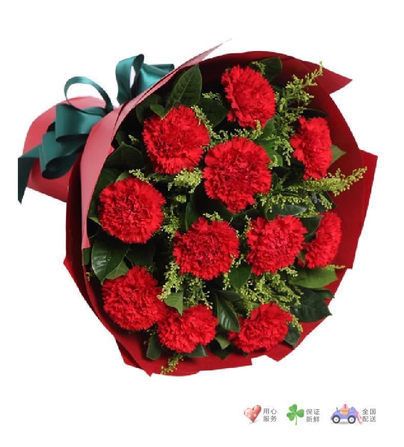 幸福花园-红色康乃馨11枝-鲜花速递