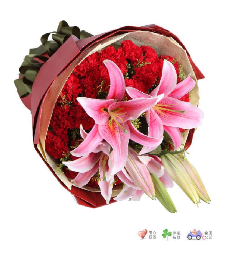 感激-29枝红康乃馨,2枝粉百合-鲜花速递