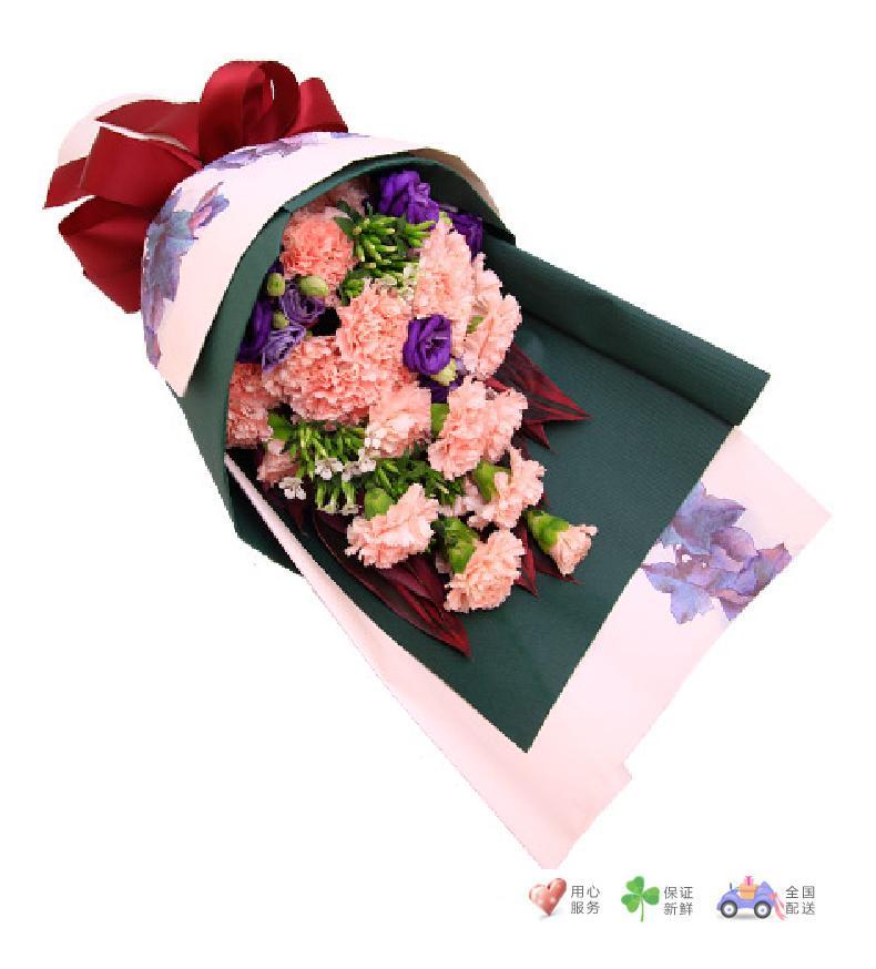 芳华-粉色康乃馨19枝,紫色洋桔梗,红铁叶-鲜花速递