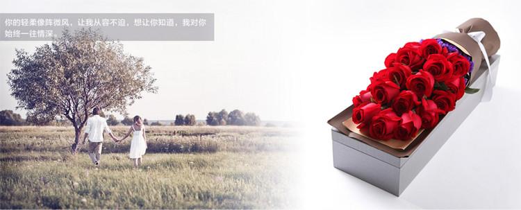 礼盒红玫瑰19枝素材1